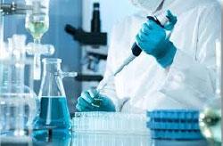 Las medicinas rumbo a la Cuarta Transformación