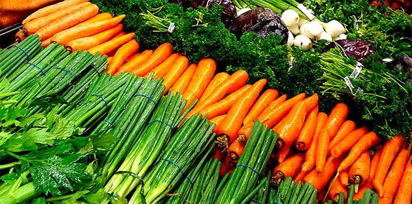 laman a cambiar hábitos alimenticios para elevar la salud