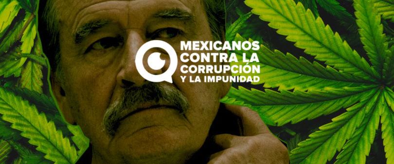 Investiga Cofepris a empresa de cannabis ligada a Vicente Fox