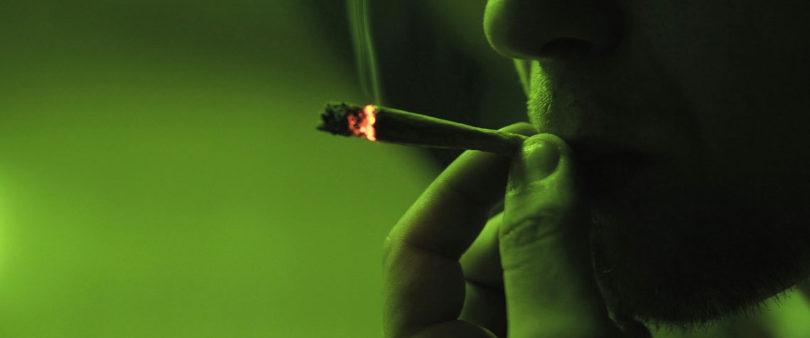 Urge Segob a reformar uso medicinal y consumo de Cannabis