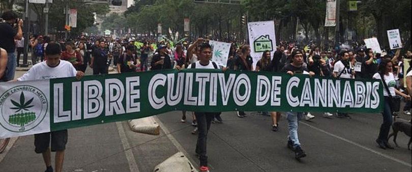 Marchan en AL y Europa por la Liberación de la Marihuana